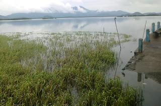 Fjord von Antonina
