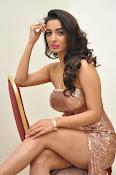Heena Panchal sizzling at Thikka audio-thumbnail-7