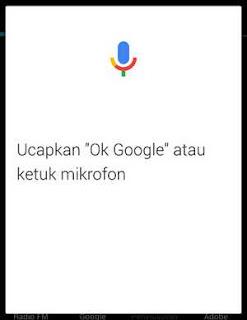 telusur suara google