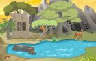 MG Jungle Forest Escape Game walkthrough
