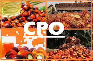 database lengkap pabrik industri produsen crude palm oil