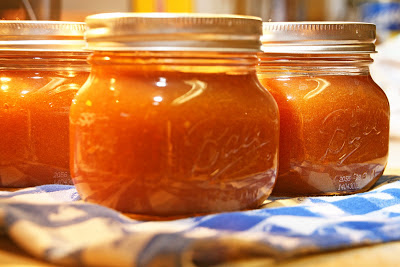 Love in the Kitchen: Habanero Peach Ketchup
