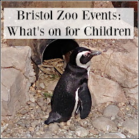 Bristol Zoo Penguin with Title Overlaid