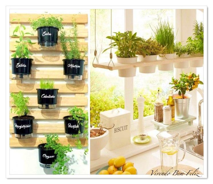 Tenha uma horta na cozinha com os seus temperos favoritos