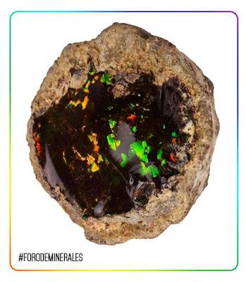 opalo chocolate mezezo etiopia | foro de minerales