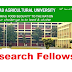 Research Fellow Recruitment PAU | January 2019