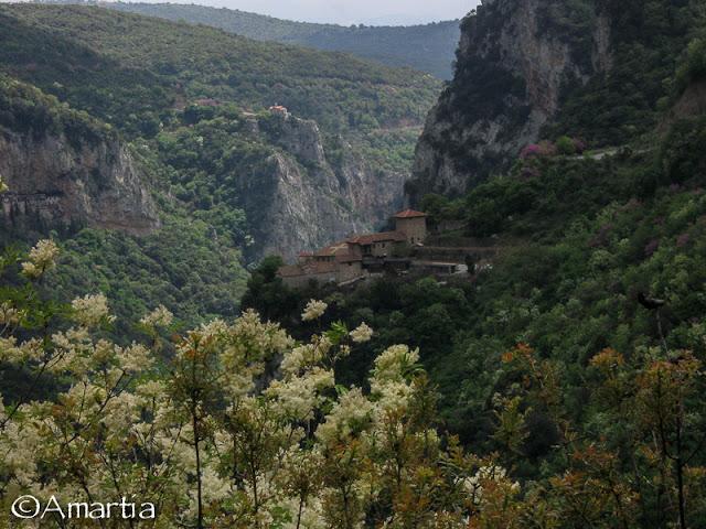 Arcadie  Gorges du Loussios  Peloponnese Grèce