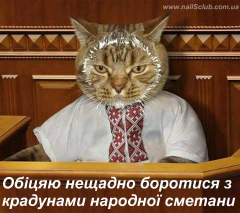 Сейчас люди видят панацею только в Антикоррупционном суде, не понимая, что он будет касаться только топ-чиновников: антикоррупционными нужно делать все суды в Украине, - Сюмар - Цензор.НЕТ 6741