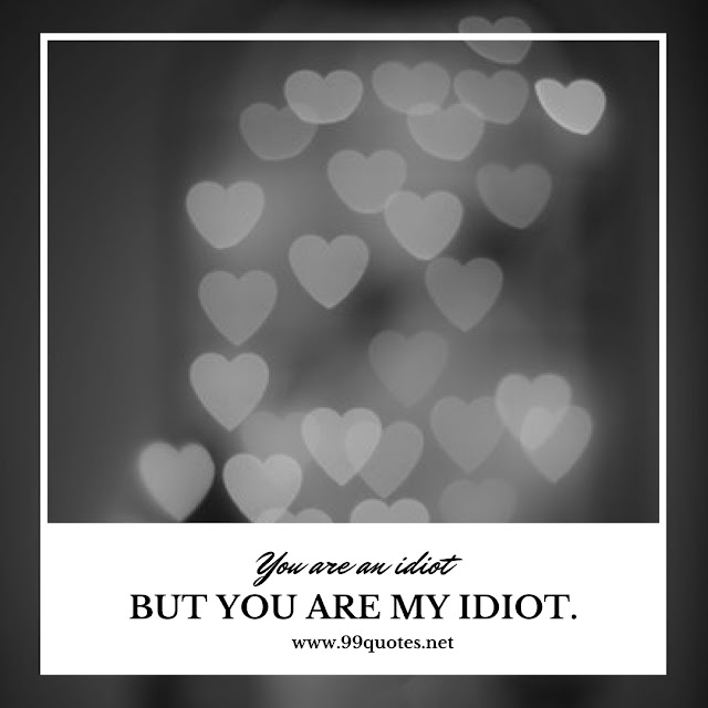 You are an idiot. But you are my Idiot.