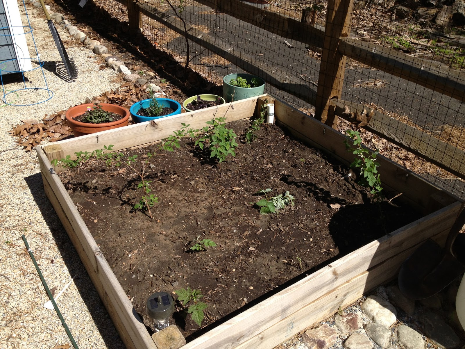 Fine Gardening Trellis Raspberry Raised Bed