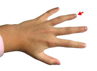 छोटी उंगली के बाद अनामिका होती है। इस उंगली के नीचे सूर्य पर्वत होता है इसलिए अनामिका उंगली को हस्तरेखा विज्ञान में काफी महत्व दिया गया है।