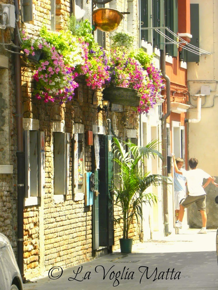 "Chioggia ingresso ristorante "" Jackie to night """