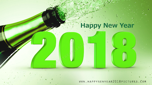 Happy New Year 2018 beer bootle pictures