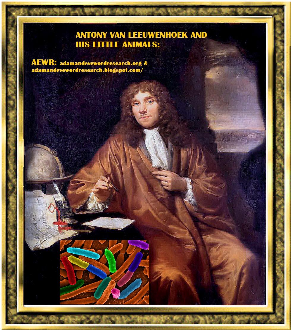 the life and contributions of anton van leeuwenhoek Antonie van leeuwenhoek was born on october 24, 1632, in the small city of delft in the dutch republic his father was philips antonisz van leeuwenhoek, a basket maker his mother was.
