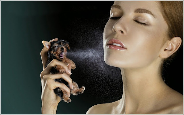 Tips Pintar Seputar Deodoran dan Parfum