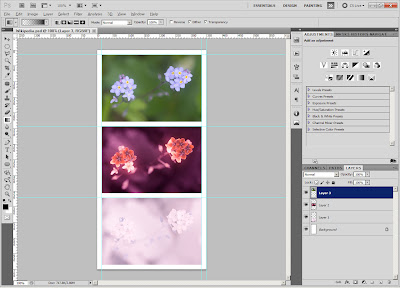 Vis-UV-IR flower photo template in photoshop