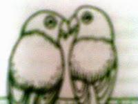 Hasil riset! ciri perbedaan Burung lovebird jantan dan betina
