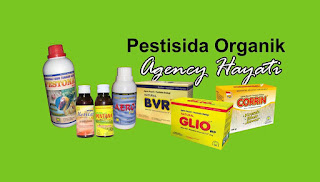 jual pestisida nasa di bengkulu