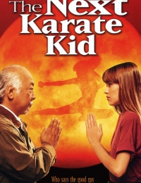 The Next Karate Kid | Bmovies