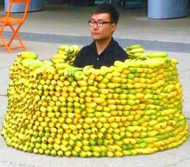 O rei das bananas