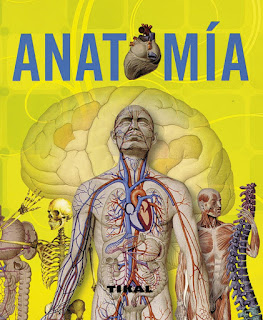 Anatomía TIKAL