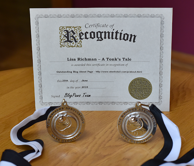 "HUGE surprise to us: BlogPaws award for best ""about page"""