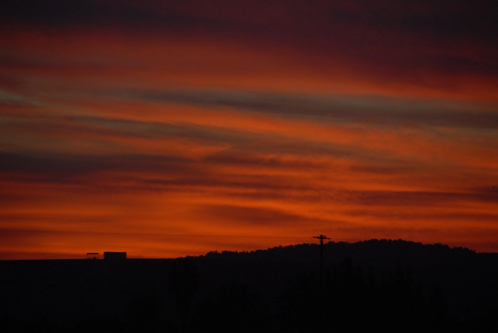 February sunset: LadyD Books