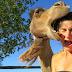 Selfies muy divertidas con animales.