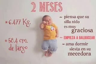 desarrollo del bebe - 2 meses