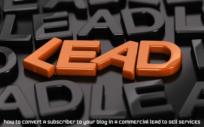 How to convert a subscriber to your blog in a commercial lead to sell services?