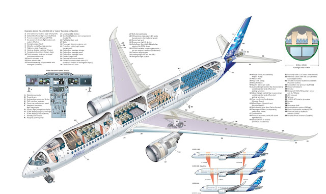 Airbus A350 Series Cutaway Drawing