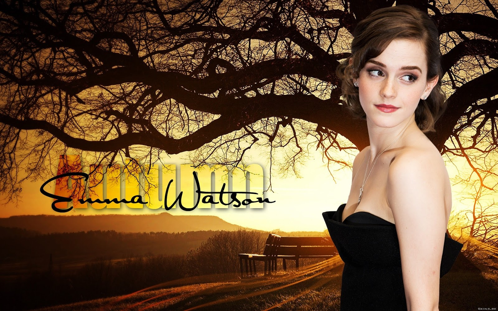 Emma watson hd wallpapers - Emma watson wallpaper free download ...