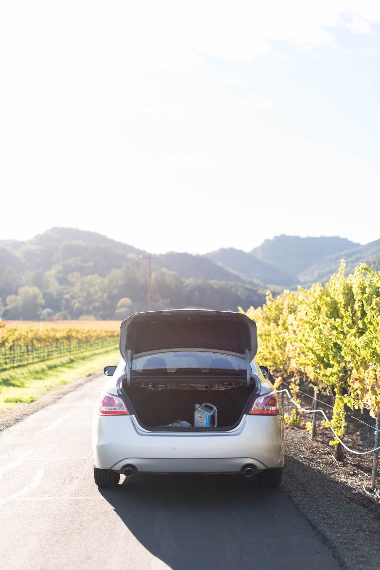 road trip, cheap tips, how to save money on road trips, california, napa valley, yountville, photography, car, vineyards, fall in napa, autumn, oil change tips, car trunk