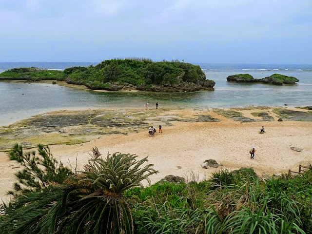 The Hoshizuna no hama beach is very special. Translated it means star sand beach.