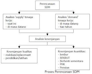 Pengertian dan Tujuan Perencanaan SDM