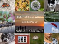 https://heutemachtderhimmelblau.com/bunt-ist-die-welt-109/