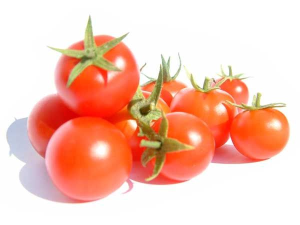 Sejarah tanaman tomat dan manfaatnya