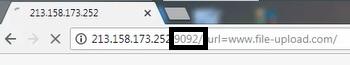 حل مشكلة Ip 213.158.173.252:9095