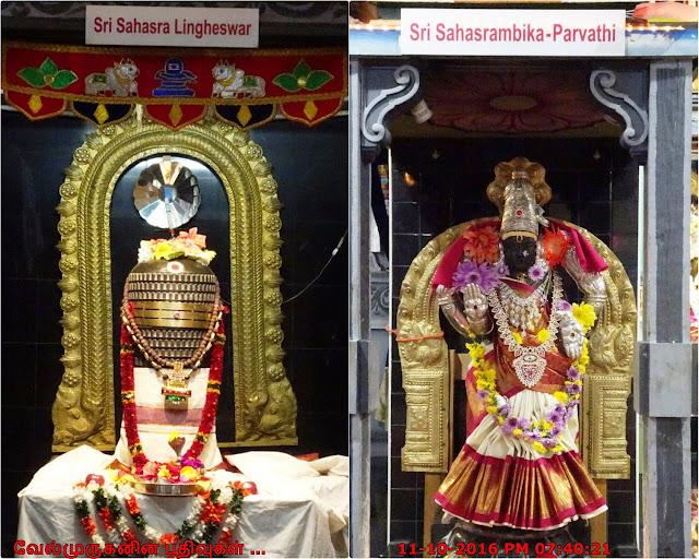 Sri Sahasra Lingheswar - Sahasrambika Parvathi