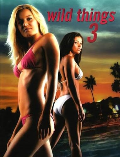 Poster Of Wild Things 3 2005 Dual Audio 300MB BRRip 576p Free Download Watch Online