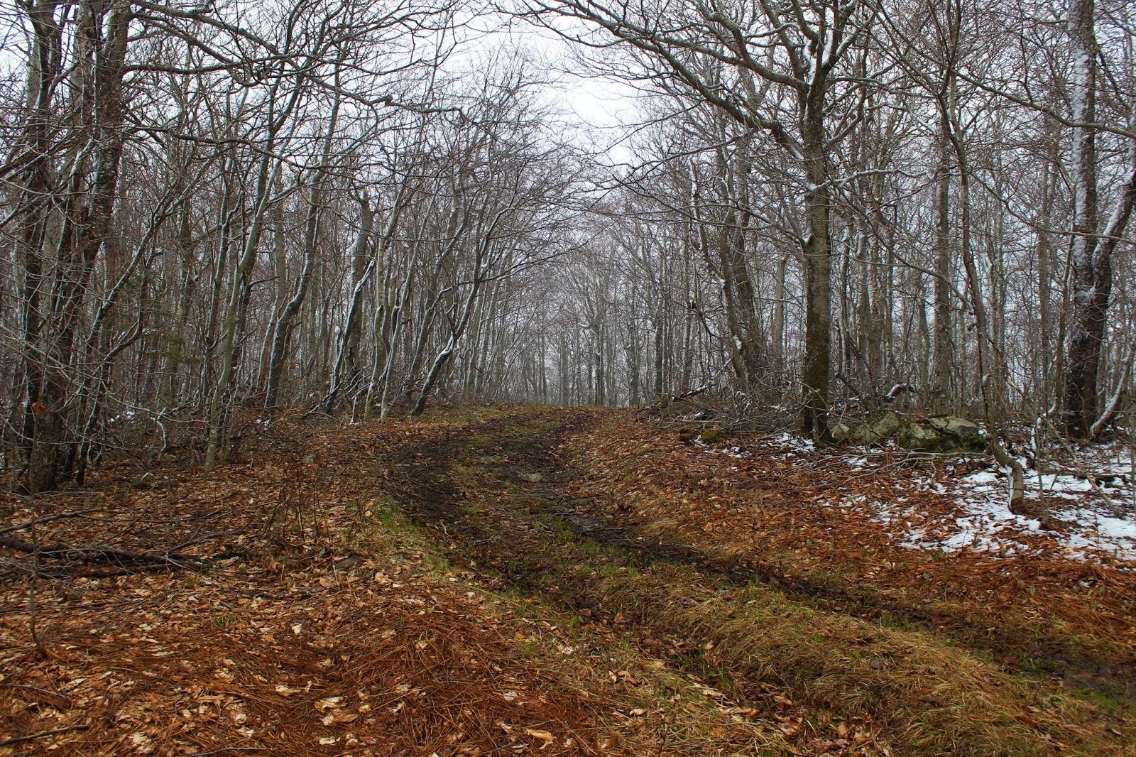 Walking Man 24 7: Dutch Hill(Vermont)