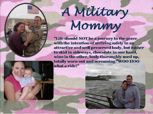 A Military Mommy: Shoo Fly