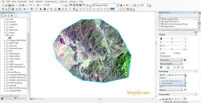Extraer imagen de un raster ArcMap 4