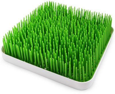 Veronica Daylight Giveaway Boon Grass Countertop Drying Rack