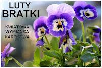 http://misiowyzakatek.blogspot.com/2017/02/kwiatowa-wymianka-kartkowa-bratki.html