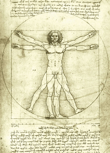 El-Hombre-de-Vitruvio-Leonardo-Da--Vinci-Marcus-Vitruvius-significado