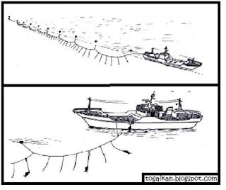 tuna long line