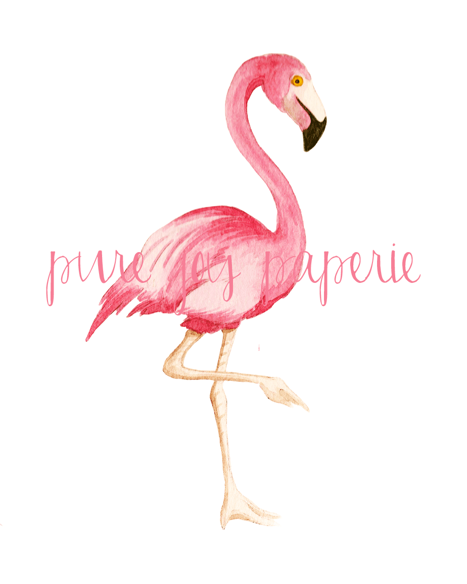 Shorely Chic Flamingo Friday