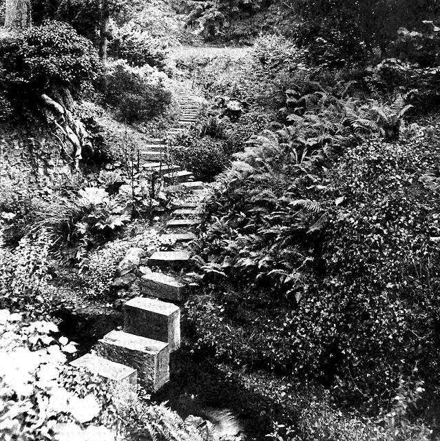 Photo of rock garden stairs 1911