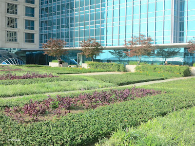roof garden, Omni Hotel, Fort Worth, Texas